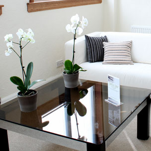 Finkbine Family Dentistry | Office